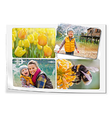 Photo magnets (set of 4)
