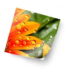 Foto auf Klebefolie 30×30 cm